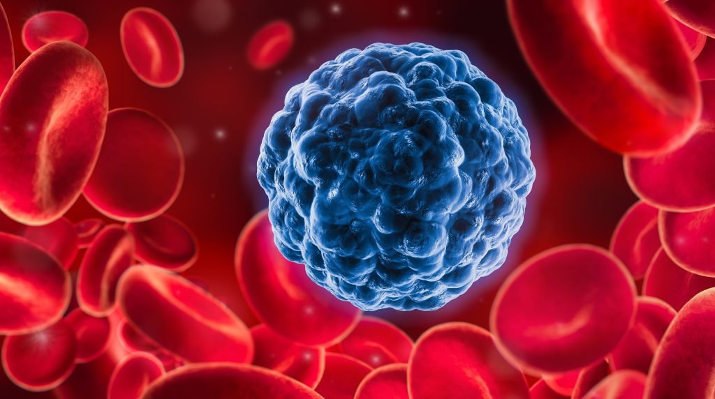 Cancer research: Aggressive cancer cells could now be in fat cells converted
