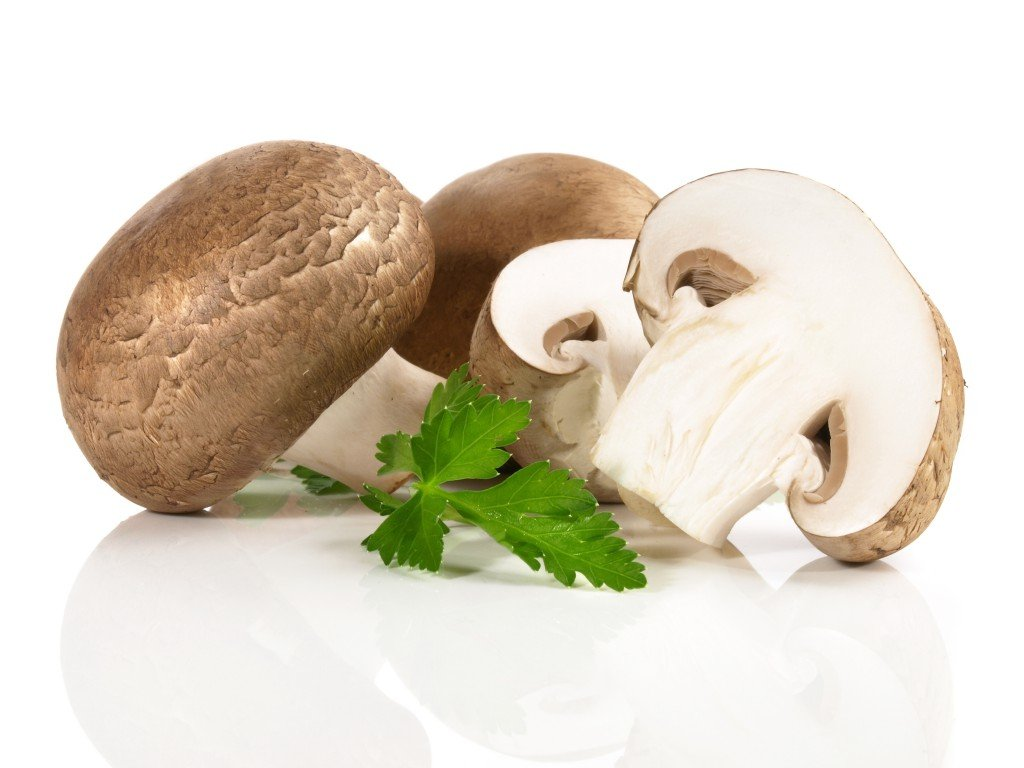 Irradiated mushrooms with a 30-Times higher levels of Vitamin D: Are fungi necessary?