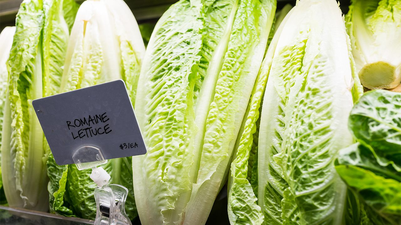 Romaine lettuce E. coli outbreak 'appears to be over,' CDC says