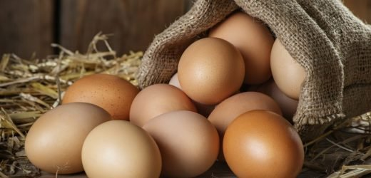 Eggs healthy or unhealthy? Pros and cons around the Egg