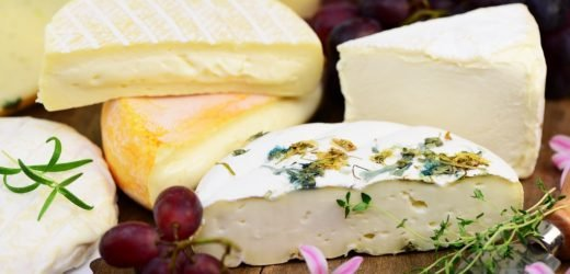 Diarrhea risk: current cheese recall because of harmful E. coli is initiated