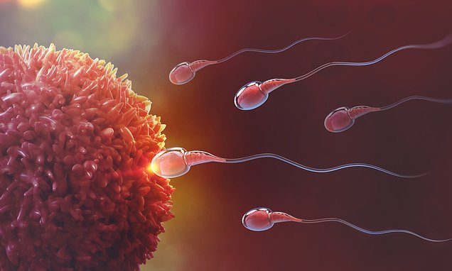 Scientists discover a gene that could explain male infertility crisis