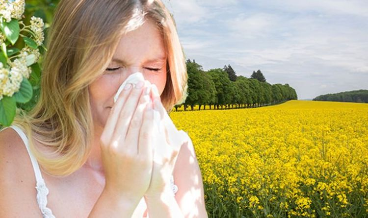 Pollen count: Met Office expects high pollen count as hot weather is forecast for Easter