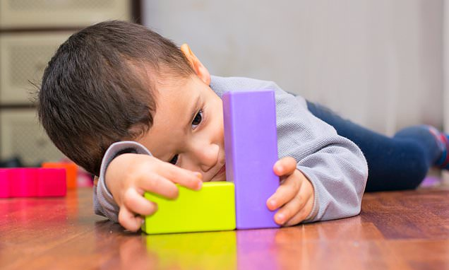 Gut bacteria may trigger autism