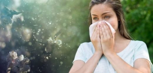 Pollen count: How to keep hay fever symptoms at bay even if counts are low