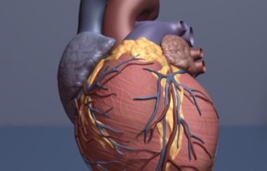 Artificial intelligence could select heart failure patients for expensive treatment