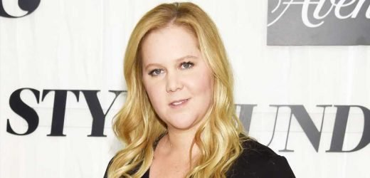 Amy Schumer Responds to Trolls Mom-Shaming Her for Returning to Work