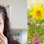 Pollen Count forecast: Levels set to increase in the next few days in South East England