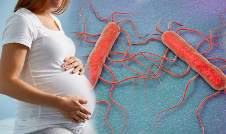 Health warning: Listeria infection is on the rise – what are the symptoms?