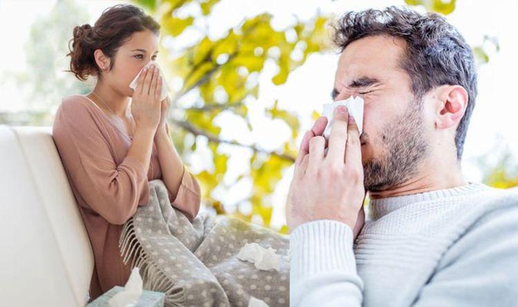 Pollen count warning: Hottest weekend brings 'very high' pollen counts