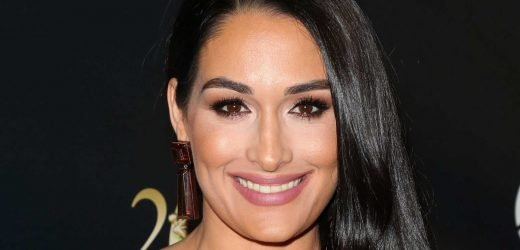 Nikki Bella Just Revealed A Brain Cyst Forced Her Into Early Retirement From WWE