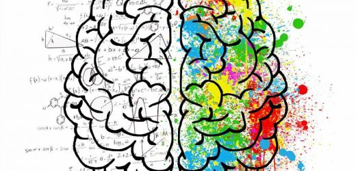 Neurocognitive basis for free will set out for the first time