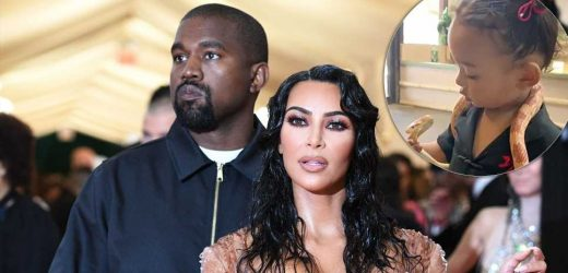 Watch Kim Kardashian, Kanye West's Daughter Chicago Bravely Hold Snake