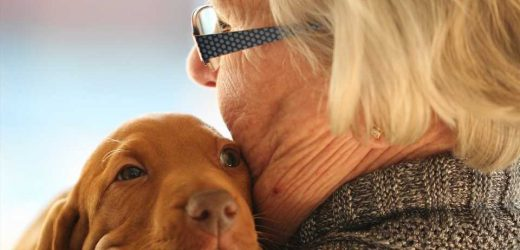 Pet-friendly aged care ticks both economic and health boxes
