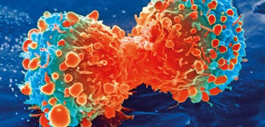 Method discovered to reactivate tumour fighting genes 'silenced' by cancer