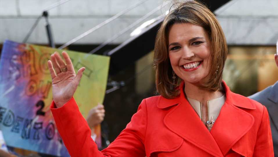 Savannah Guthrie Suffers Serious Eye Injury from Toy Train Hurled by Toddler Son