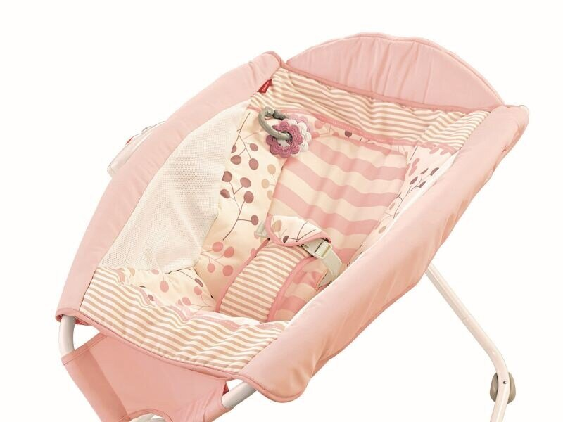 eBay bans infant inclined sleepers, other companies urged to do same