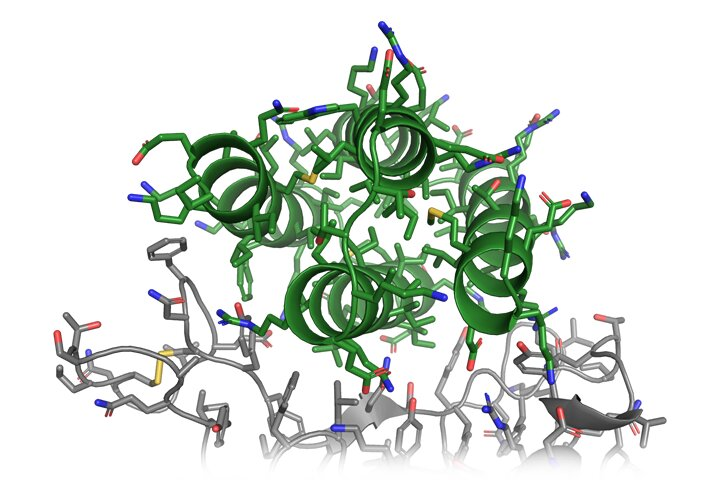 Citizen scientists are helping researchers design new drugs to combat COVID-19