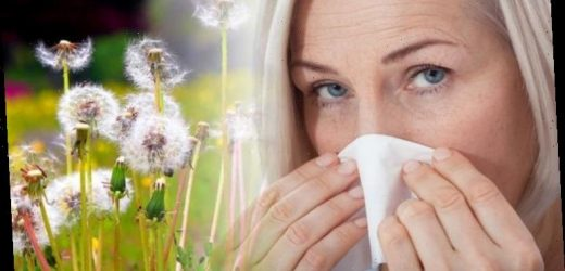 Hay fever: Are you suffering for the first time? The key to preventing bad symptoms