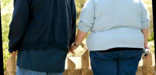 Obesity raises risk of dementia by one third, study finds