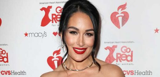 Hello There! See Pregnant Brie Bella's Baby Kicking at 35 Weeks