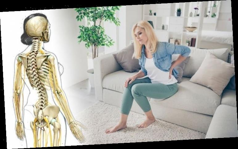 Back pain treatment: Six overlooked remedies that could ease your symptoms