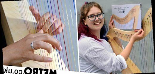 Dyslexic harpist unable to read sheet music creates inclusive rainbow harp