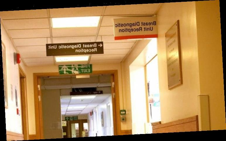 Covid latest: 'Thousands may die early of cancer as a result of lockdown', say experts