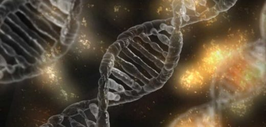 Researchers discover treatment option for rare genetic disorder
