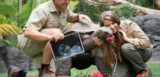 Bindi Irwin Reveals She & Husband Chandler Are Expecting a Baby Girl: 'Can't Wait for Her Arrival'