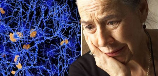Dementia symptoms: Problems with 'orientation' can signal Alzheimer's disease
