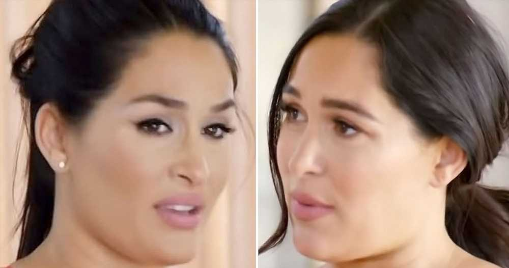 Watch Nikki and Brie Bella Disagree on Breast-Feeding Each Other's Babies