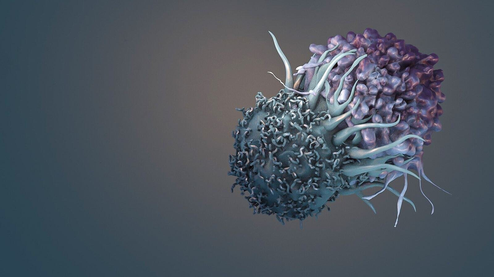 Computing empowers immune cells to kill cancer
