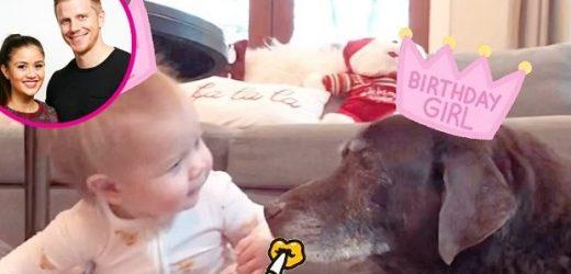 Sean Lowe and More Celebs Celebrate Kids' Birthdays in Quarantine