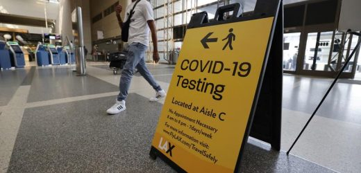 White House not mandating COVID-19 testing before domestic flights