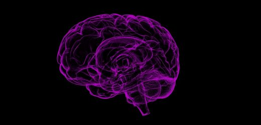 Researchers map brain regions responsible for intoxicating effects of alcohol