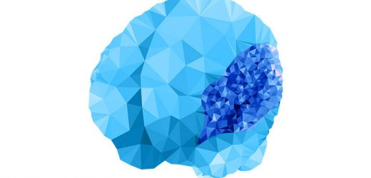 A 'pump' gene's surprising role in early brain formation