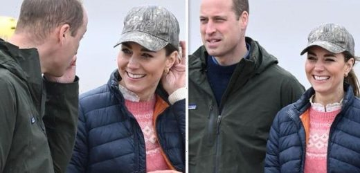 Prince William's health: Experts discuss the royal's hereditary hair loss