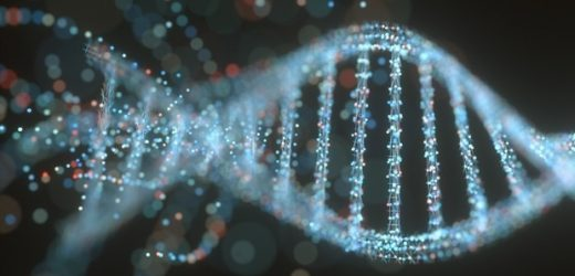 Study shows how the physical nature of genome changes  before and after cell differentiation