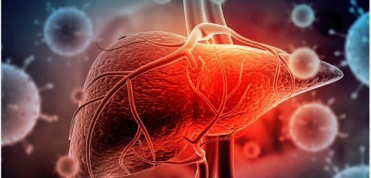 The Types of Hepatitis