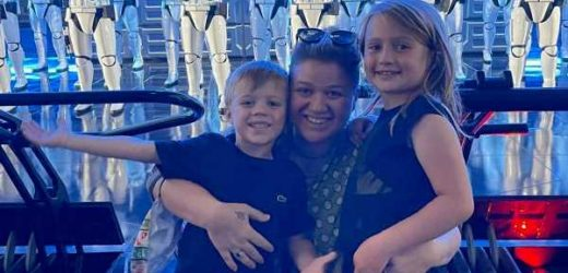 Kelly Clarkson Shares Rare Photo With 2 Kids During Disney World Visit