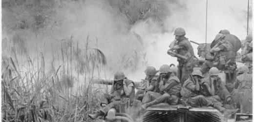 Mental health experiences of LGB Vietnam-era veterans