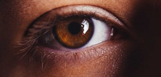 A new protein treatment for glaucoma?